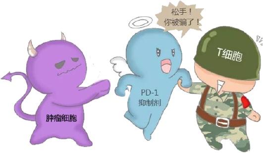 如何挽救T细胞及免疫系统